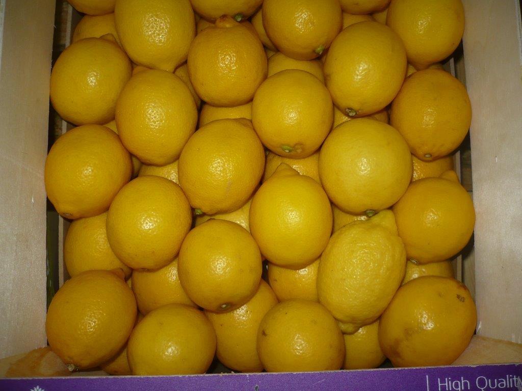 Inspección de limones